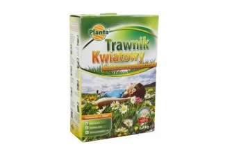 Dekoracyjna trawa Trawnik kwiatowy 0,9 kg firmy Planta – łąka kwiatowa