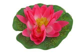 Lilia wodna mała, średnica 15cm różowa GW7295