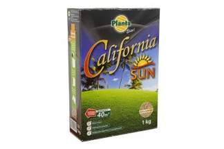 Trawa California Sun 1kg - trawa na tereny suche, nasłonecznione i ubogie w wodę