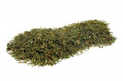 Skrzyp polny 200 g - naturalny środek do eko oprysków na przędziorki, roztocza, wgryski szczypiorkowe