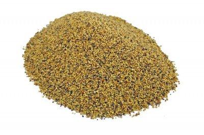 Koniczyna czerwona (łąkowa) kwalifikowana, nasiona koniczyny 10 kg