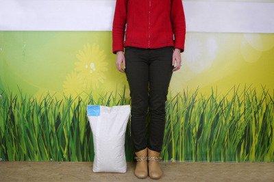 Koniczyna czerwona (łąkowa) kwalifikowana, nasiona koniczyny 30 kg