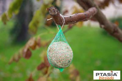 Kula tłuszczowa zimowa dla ptaków 90g Natural-Vit 30szt wiaderko