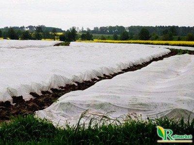 Polska agrowłóknina wiosenna biała 10,5x100m (19g) Wzmacniane Brzegi