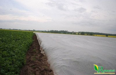 Polska agrowłóknina wiosenna biała 12,65x250m (23g) Wzmacniane Brzegi
