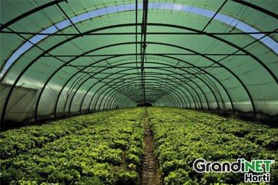 Siatka (dzianina) cieniująca Grandinet HORTI 6x10m 42%